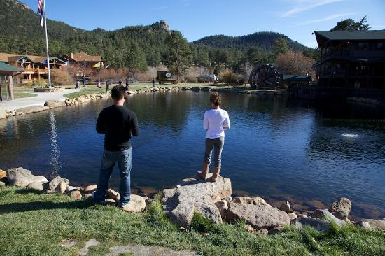 First Fish Caught Out If 5 Picture Of Trout Haven Fishing Pond Estes Park Tripadvisor