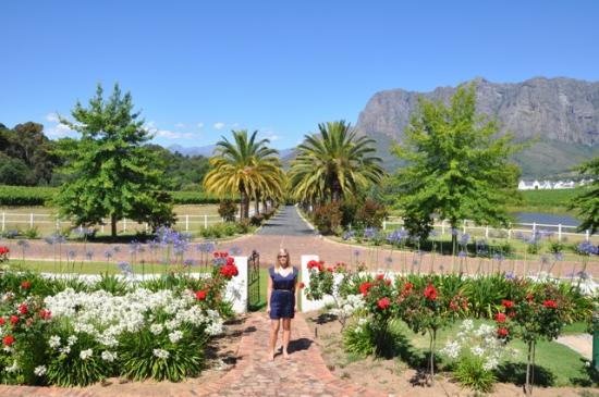 Cape Town, Gney Afrika: Vorgvliet Winery - Stop #3