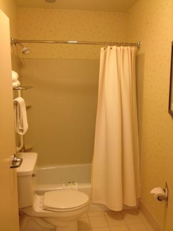 SpringHill Suites Dallas Las Colinas: Shower area