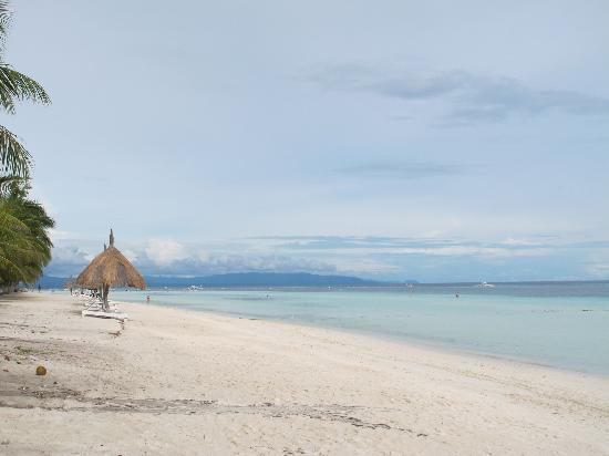 Bohol Beach Club: the beach!