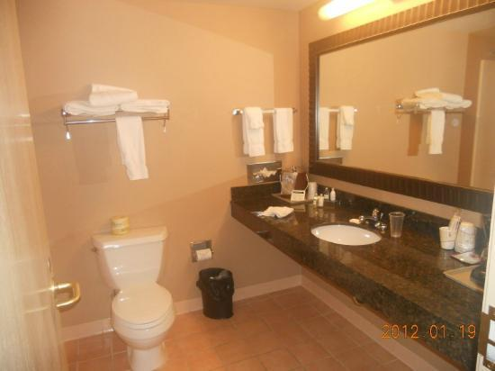 Treasure Island Resort & Casino: Bathroom