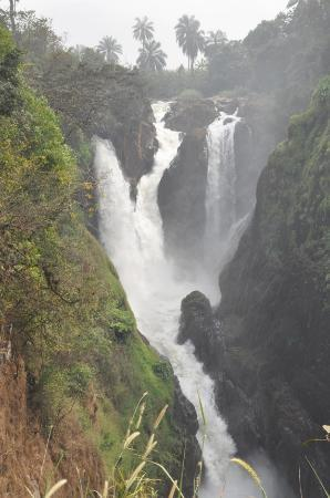 Bamenda, Cameroon: Meecham Falls (about 20 km south of Wum a short walk from the road--no signs)