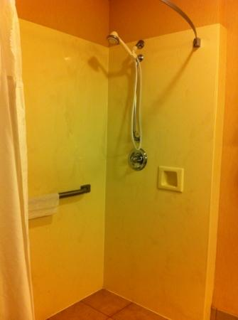"Country Inn & Suites By Carlson, Montgomery East: the handheld shower, so high that I had to stretch to reach it- this was ""accessible""?"