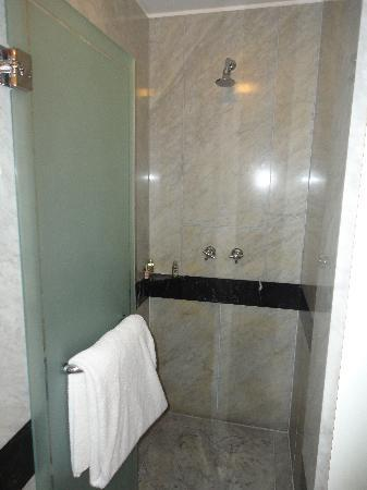 Four Seasons Hotel Buenos Aires: Large shower