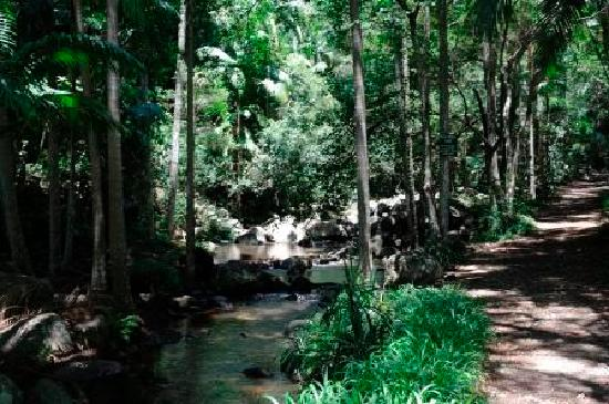 Tamborine, Australia: Natural Rock Pools & Bush Walk - Dated 20/01/12