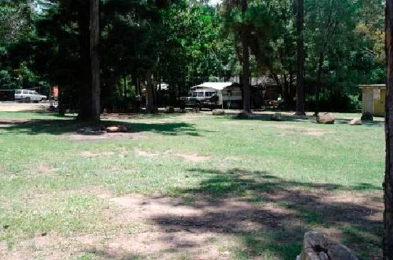 Tamborine, Australia: Bush Side Camping - Dated 20/01/12