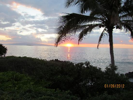 Ocean Breeze Hideaway : Just anothe sunset in Maui