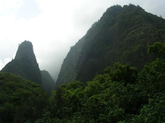 Maui, Hawaï : Iao Valley
