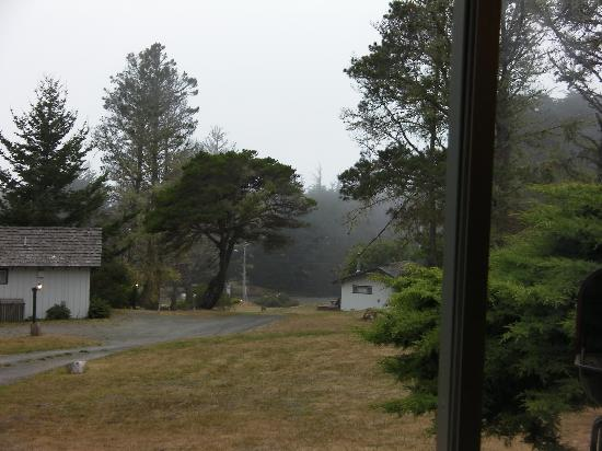 The Andiron -- Seaside Inn & Cabins: View from our deck!