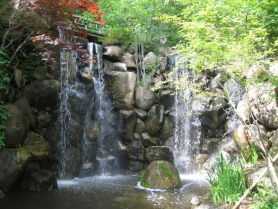 Beautiful Waterfall Picture Of Anderson Japanese Gardens