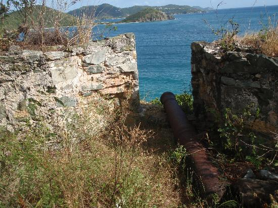 A House of Open Arms: cannons on the hillside below the cottage