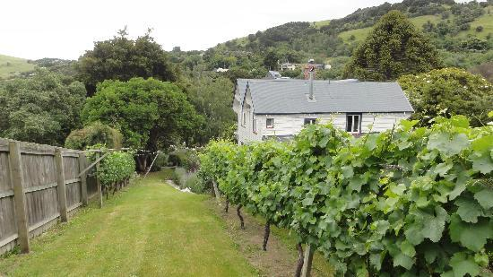 Beaufort House Akaroa: The house-wine comes from here
