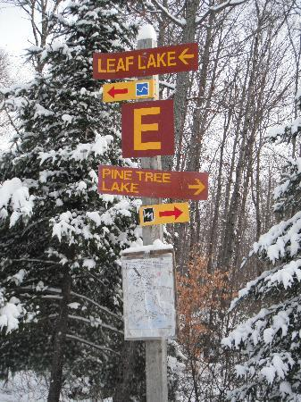 Mew Lake Campground: ski trail
