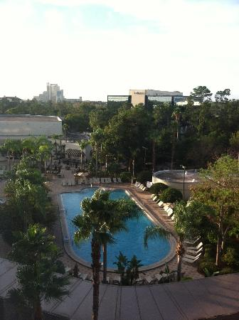 Hilton Orlando Lake Buena Vista: This is heated pool view from our room.