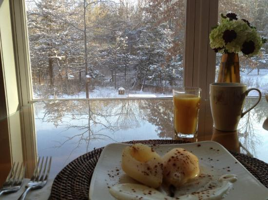 Moondance Ridge Bed & Breakfast: view from breakfast