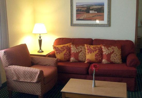 TownePlace Suites Anaheim: Modern furniture