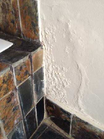 Cape Diamond Hotel: what could have been a pretty bathroom wrecked by mould.