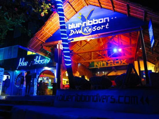 Blue Ribbon Dive Resort: Night view