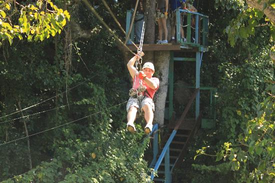 Redwood Canopy Tours | North Coast Adventure Centers