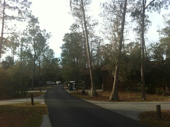 Photos of disney s fort wilderness resort and cground cing
