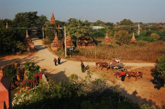 Thurizza Hotel Bagan: outside main entrance, taken from rooftop restaurant