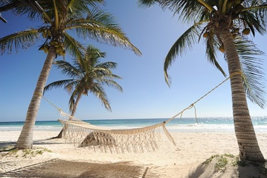 Photo of Las Ranitas Eco-boutique Hotel Tulum