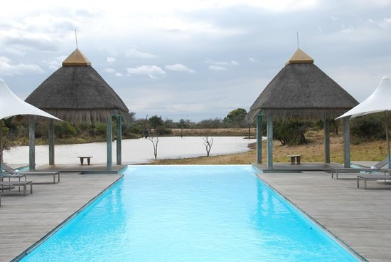 Kapama River Lodge: piscina della SPA