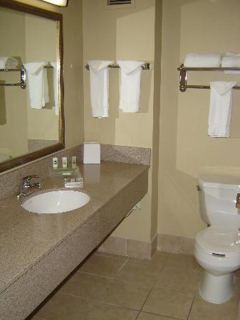 Country Inn & Suites Bothell: Bathroom