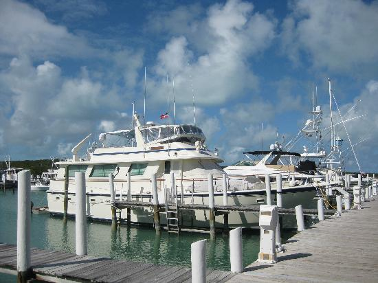 Seaspray Resort &amp; Marina: Boat in the Sea Spray Marina