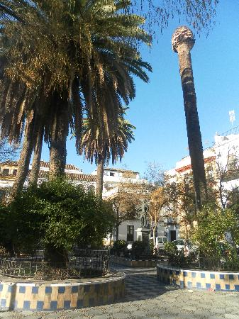 Pension San Pancracio: nearby square