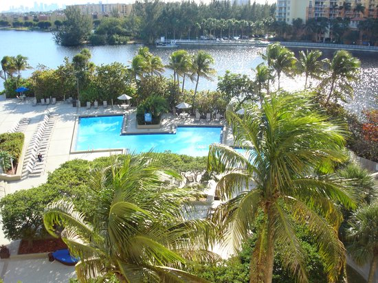 Hilton Miami Airport: Lake pool