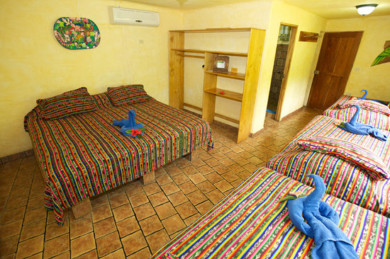 El Sano Banano Village Hotel: Village Room for up to 5 people