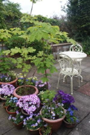 Castlecroft: Patio