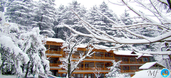 Photo of Mayflower Hotel Manali