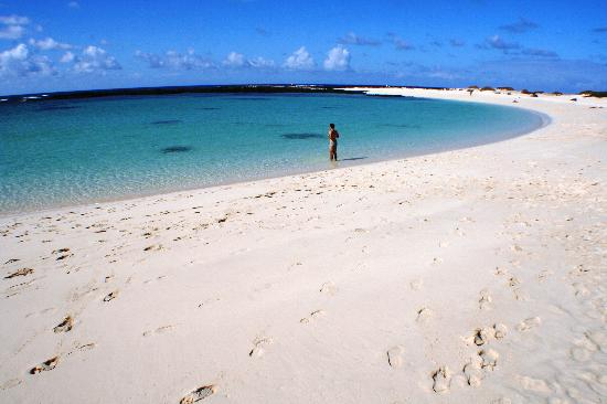 El Cotillo, İspanya: One of the beaches