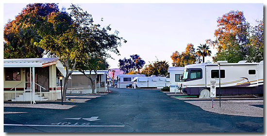 Prince of Tucson RV Park: The RV Park