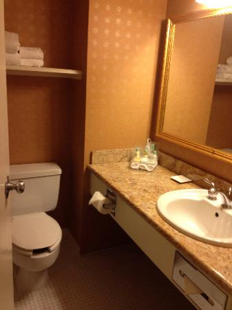 Delta Winnipeg: Bathroom