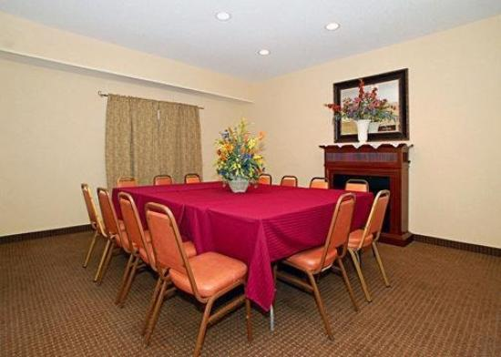 Quality Inn & Suites Batavia-Darien Lake: Meeting Room