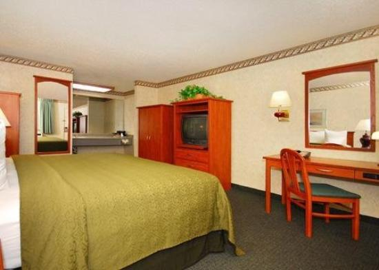 Quality Inn & Suites Silicon Valley: Guest Room