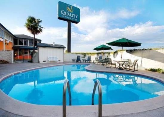 Quality Inn & Suites Silicon Valley: Pool
