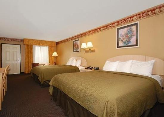 Quality Inn &amp; Suites Fort Jackson Maingate: Guest Room