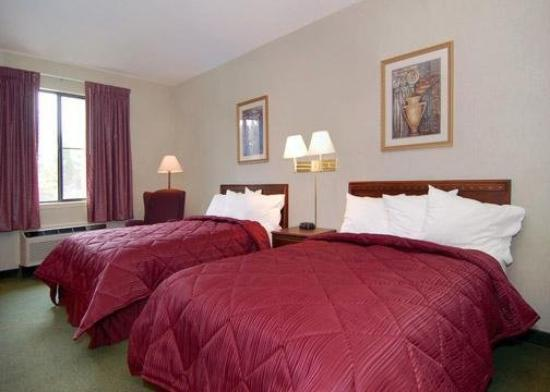 Quality Inn &amp; Suites: Guest Room