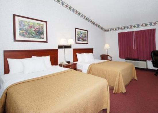 Quality Inn & Suites: Guest Room