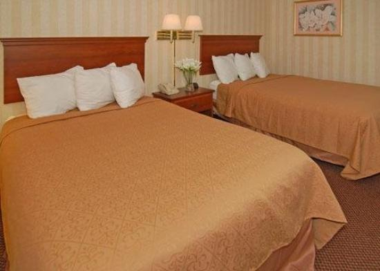 Quality Inn near Potomac Mills: Guest Room