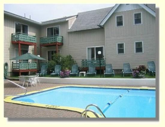 Town and Country Motor Inn: Pool view