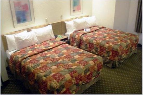 Sleep Inn : Guest Room