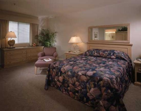 Riviera Shores Resort: Guest Room
