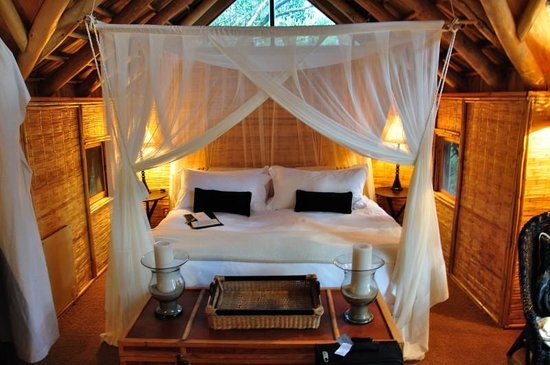 The Phantom Forest Eco-Reserve: Upper Tree Suite Bed
