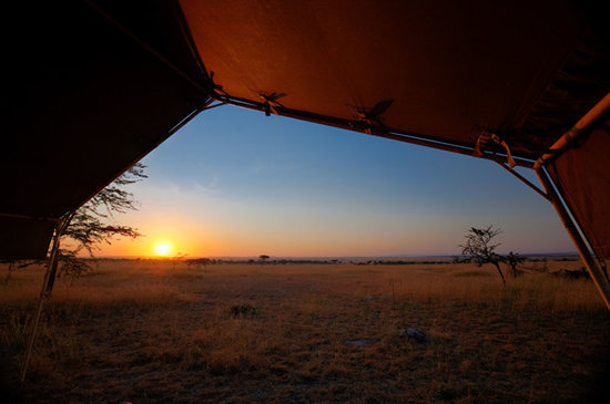 Serengeti Mara Camp