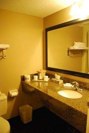 Quality Inn West Harvest: Bathroom